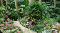 Shore Excursion Taste of Barbados Full-Day Sightseeing Tour image 1