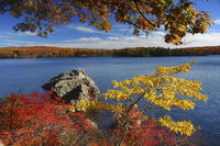 Overnight Fall Foliage Tour from New York City Picture