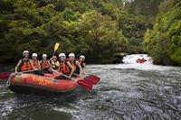 Rangitaiki River White Water Rafting from Rotorua, Rotorua Adventure & Extreme Sports