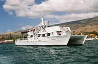 Lanai Island Dolphin and Snorkel Cruise from Maui