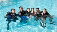 3-Day PADI Open Water Certification Course on the Gold Coast, Southport Diving & Snorkelling