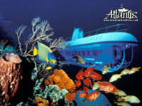 Atlantis Submarine Expedition, Cozumel