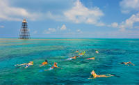 Key West Reef Snorkeling Cruise Photo
