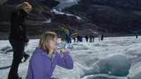 Athabasca Glacier Snow Trip from Banff
