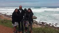 Full-Day Private Tour to Cape Point from Cape Town