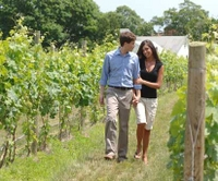 Long Island Wineries and Outlet Shopping from New York City Picture