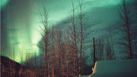 Aurora Borealis Mountaintop Viewing from Cabin with Transportation from Fairbanks