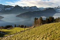 Mount Rigi Winter Day Trip from Zurich