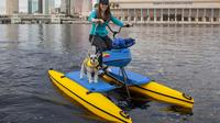 Downtown Tampa Water Bike Experience