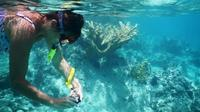 """Private Tour Batam Island Reef Snorkel And Kayak Day Trip From Singapore"""""""