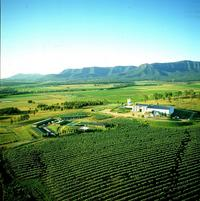 2-Day Hunter Valley Small-Group Eco-Tour