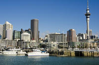 Auckland City Highlights Tour, Auckland CBD Tours and Sightseeing