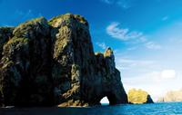 Bay of Islands Cape Brett 'Hole in the Rock' Cruise, Paihia Tours and Sightseeing