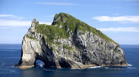 Cape Brett Hole in the Rock Cruise from Auckland