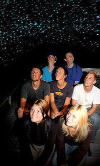 Waitomo Glowworm Caves Discovery Tour from Rotorua, Rotorua Tours and Sightseeing