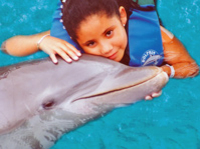 'Cancun Dolphin Encounter' - Delfine treffen in Cancun