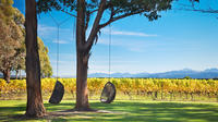 Marlborough Wine Tour and Cruise from Picton or Blenheim