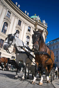 Vienna City Walking Tour