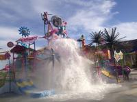 Picture of Wet 'n' Wild Las Vegas Admission and Transport