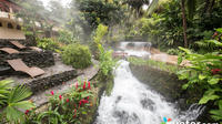 Tours Arenal Volcano with Tabacon Hot Springs