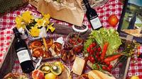 Amarone Tasting, Vineyard Tour and Picnic from Verona