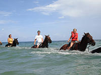 Heritage Beach Horse Ride