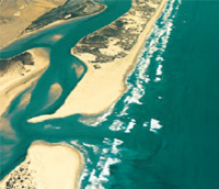 Coorong Wilderness Tour from Adelaide