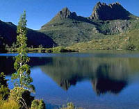 Cradle Mountain National Park Day Tour from Launceston