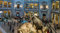 Private Combo Tour: Smithsonian National Museum of Natural History and National Gallery of Art