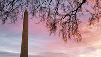 The National Mall and National Gallery of Art Private Tour