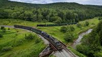 Cheat Mountain Salamander Train Excursion in West Virginia