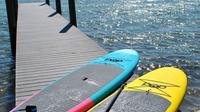 Mangrove Paddleboard Tour Through Woolverton Trails in Charlotte Harbor