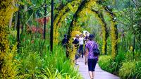 Private: Half Day Singapore City Tour Including Botanical Orchid Garden 2pm Afternoon City Tour 3 Pax
