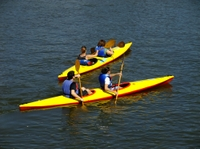 Picture of Belize City Shore Excursion: River Kayak and Horseback Riding Tour