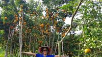 Experience Mekong Delta 2 Days 1 Night With Homestay