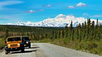 Denali Highway Jeep Excursion