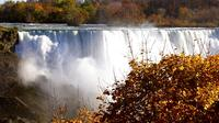 Private Tour and Transfer from Hamilton International Airport to Niagara Falls