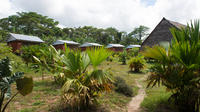 3-Day Maniti Eco-Lodge Amazon Experience from Iquitos