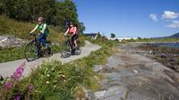 Explore Tromso by E-bike - Guided Ride on Electric Bike in Tromso image 1