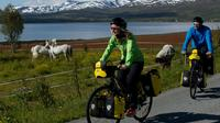 Touring-Trekking Bicycle Rental in Tromso - 1 to 8 Days image 1