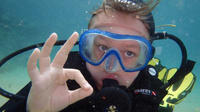 1-hour introduction to scuba diving for children in Lanzarote