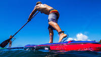 2-Hour Paddle Surf Course for Beginners in Las Canteras Beach, Las Palmas