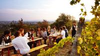Napa and Sonoma Wine Tasting Tour from San Jose