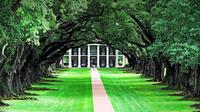 Private Chauffeured and Historian Guided Plantation Country Tour of New Orleans