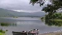 The Ring of Kerry Private Driving Tour from Killarney image 1