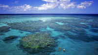 7 night Great Barrier Reef cruise image 1