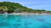 Half-Day Snorkeling at Dumaguete Apo Island Including Lunch
