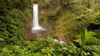 One Day Pass to La Paz Waterfall Gardens Nature Park and Wildlife Refuge