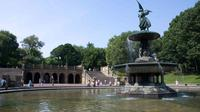Imagen Small-Group Central Park Walking Tour
