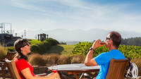 Private Tour: Full-Day Guided Scenic Cycling Winery Tour from Nelson with Lunch